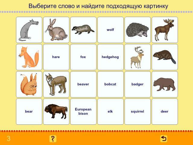 Учим английские слова. Животные_2