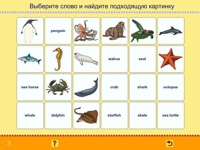 Учим английские слова. Животные_6
