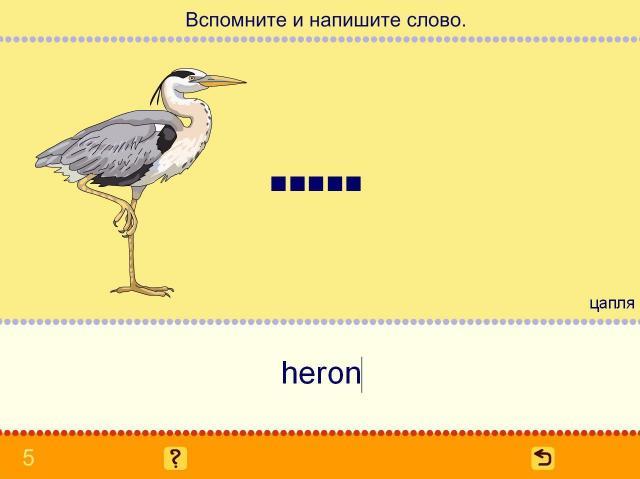 Учим английские слова. Птицы_5
