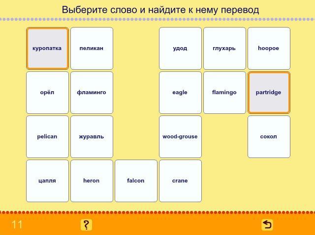 Учим английские слова. Птицы_8