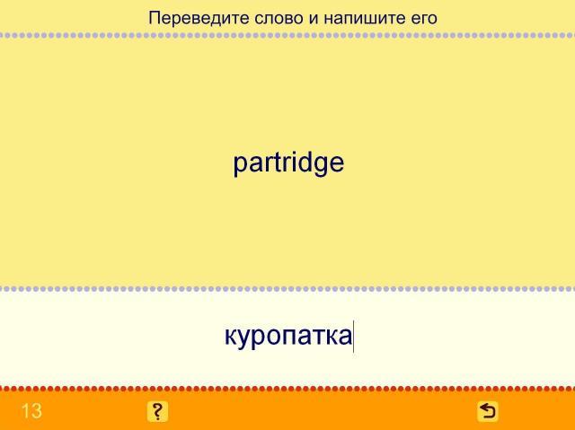 Учим английские слова. Птицы_9