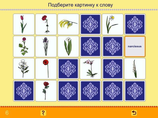 Учим английские слова. Цветы_6